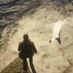Shark found in RDR2 🦈😱
