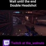 Double Headshot