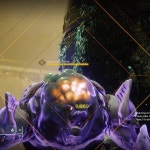 IKELOS sniper Fourth Time's the Charm vs Triple Tap