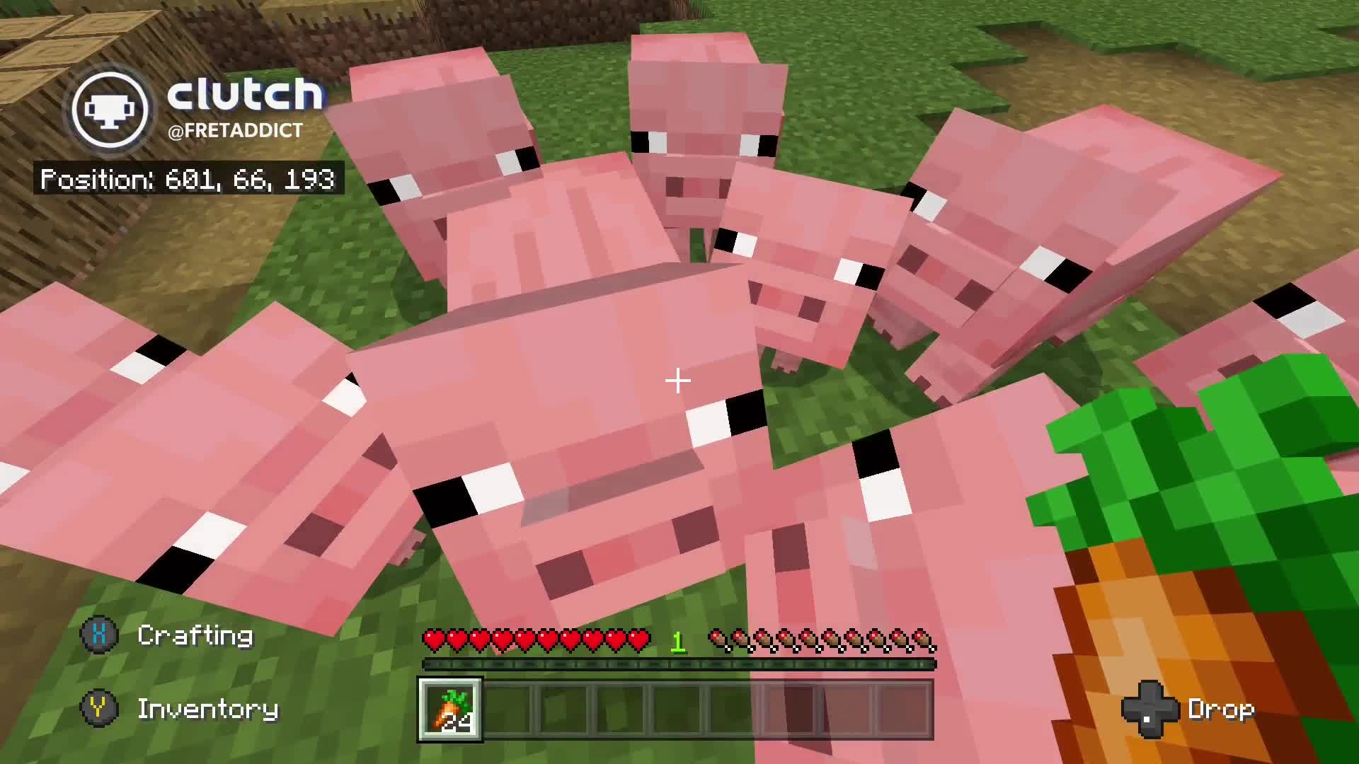 Minecraft: General - They only want me for my carrots  video cover image 0